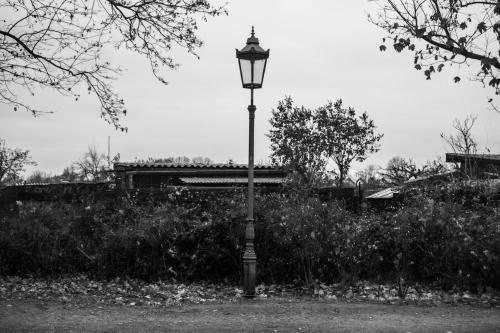 Laterne, Straße, abgelegen, in der Nähe Gärten