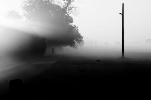 übersicht morgendliche szene nebel herbst ein fahradfahrer